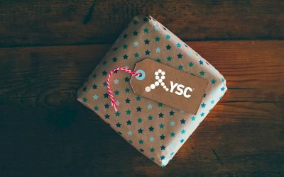 Newly Diagnosed Breast Cancer Holiday Survival Guide